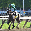 Sistercharlie wins the 2019 Diana Stakes at Saratoga<br /> Coglianese Photos/Elsa Lorieul