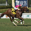 Grand Journey - AOC, Gulfstream Park, July 4, 2019<br /> Coglianese Photos/Lauren King
