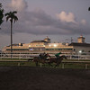 Morning  @ Gulfstream Park   Jan 19 2019<br />       ©JoeDiOrio/Winningimages.biz