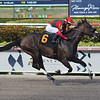 Ice Tea - AOC, Gulfstream Park, July 21, 2019<br /> Coglianese Photos/Lauren King