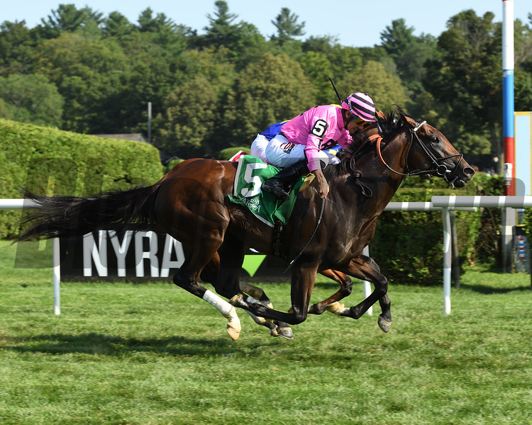 Casa Creed wins the 2019 National Museum of Racing Hall of Fame Stakes<br /> Coglianese Photos/Janet Garaguso