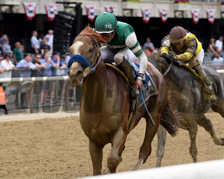 Catalina Cruiser wins the 2019 True North Stakes at Belmont Park<br /> Coglianese Photos/Elsa Lorieul