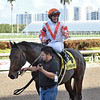 Doctor Mounty wins the 2019 Tropical Turf Stakes (G3T) at Gulfstream Park<br /> Coglianese Photos/Lauren King