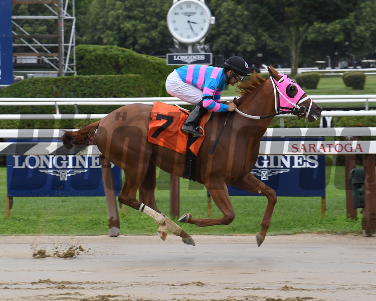 Just Fly - Maiden Win, Saratoga, July 17, 2019<br /> Coglianese Photos