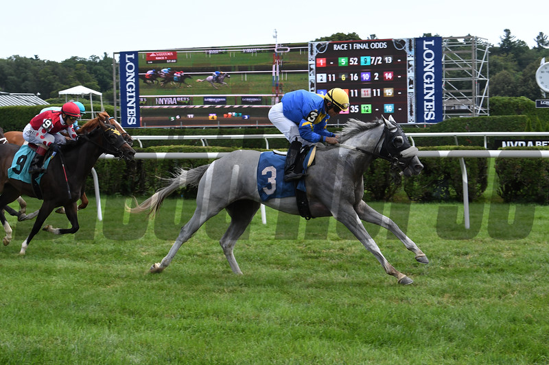 Frosted Rose - Maiden Win, Saratoga, August 1, 2019<br /> Coglianese Photos