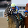 Honor Up wins the 2019 Say Florida Sandy Stakes at Aqueduct<br /> Coglianese Photos/Chelsea Durand