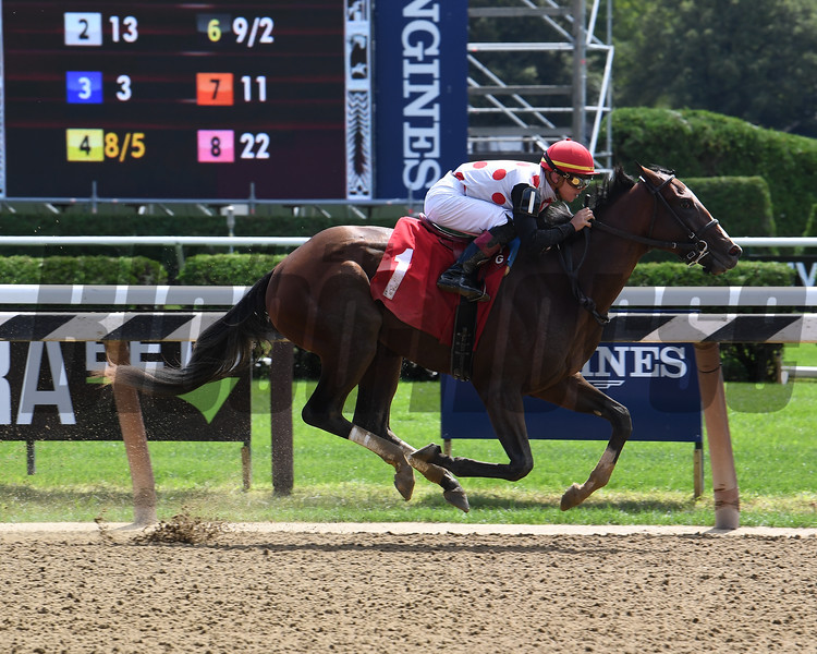 Tap It to Win - Maiden Win, Saratoga, August 24, 2019<br /> Coglianese Photos