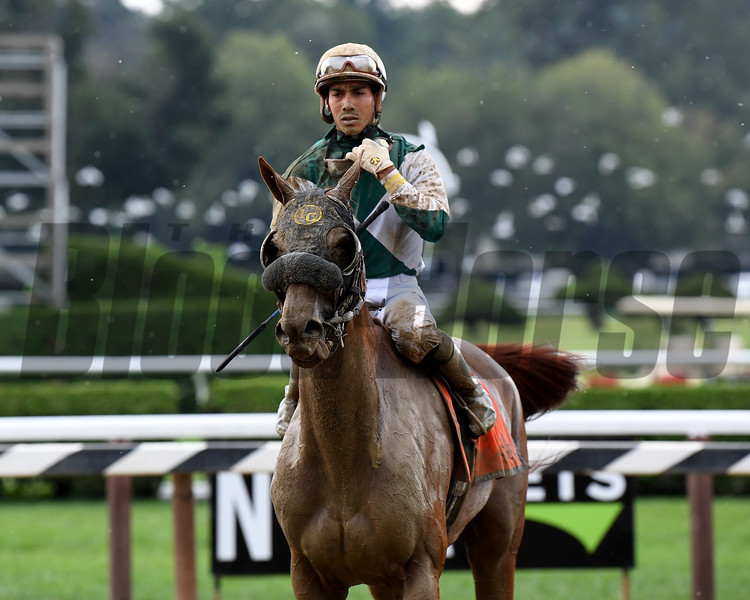 Blue Prize wins the 2019 Summer Colony Stakes at Saratoga. Photo: Coglianese Photos/Susie Raisher