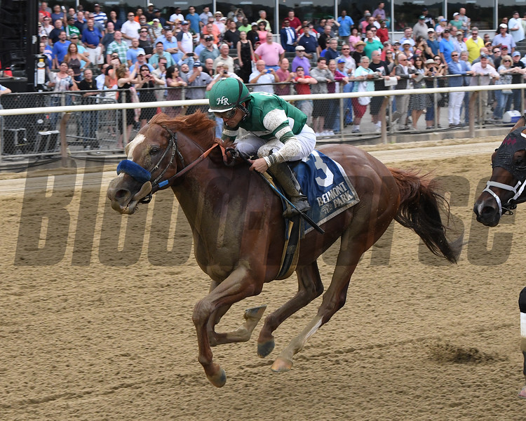 Catalina Cruiser wins the 2019 True North Stakes at Belmont Park<br /> Coglianese Photos/Chelsea Durand
