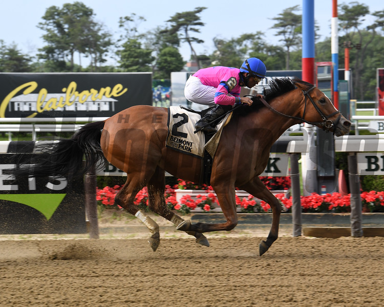 Holiday Disguise wins the 2019 Dancin Renee Stakes at Belmont Park<br /> Coglianese Photos/Susie Raisher