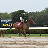 Dunbar Road wins the 2019 Alabama Stakes at Saratoga<br /> Coglianese Photos/Amira Chichakly