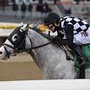 Bavaro wins 2019 Hollie Hughes Stakes at Aqueduct Racetrack. Coglianese Photos/Joe Labozzetta