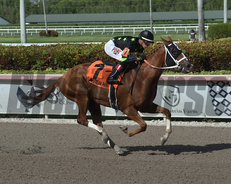 Stormy Embrace wins the 2019 Musical Romance Stakes at Gulfstream Park<br /> Coglianese Photos/Lauren King