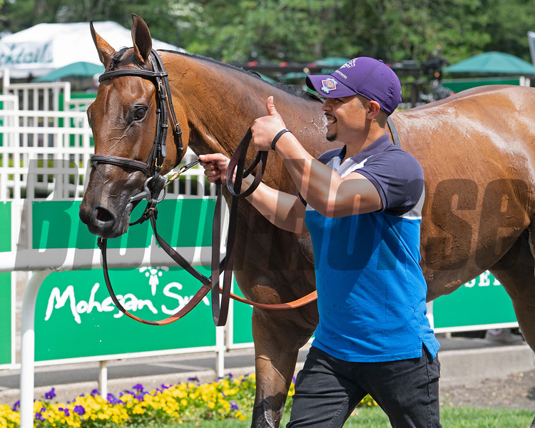 Separationofpowers and a thumbs up from her groom after winning the Bed o' Roses (G3) at Belmont Park <br /> 7, 2019 in Elmont,  NY.