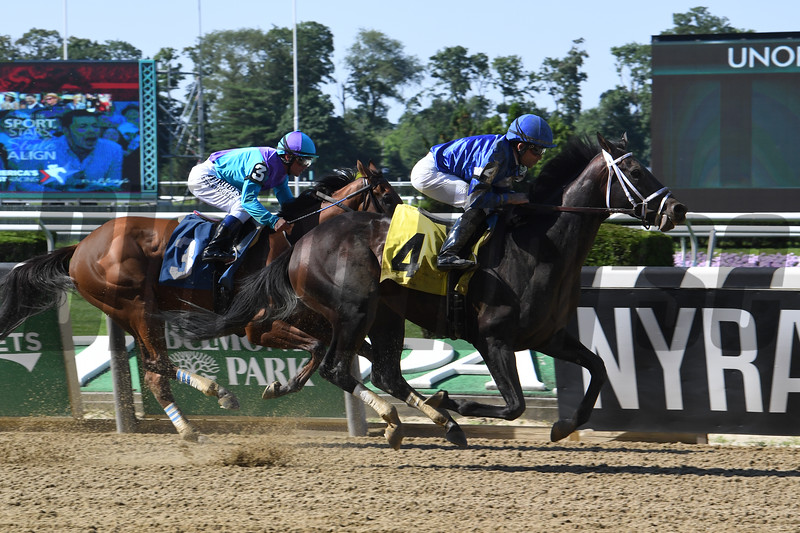 Endorsed - ALW, Belmont Park, June 23, 2019<br /> Coglianese Photos