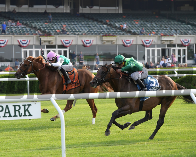 Demarchelier wins the 2019 Pennine Ridge Stakes at Belmont Park<br /> Coglianese Photos/Joe Labozzetta