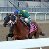 Vino Rosso with John Velazquez win the 64th Running of The Stymie at Aqueduct on March 9, 2019. Photo By: Chad B. Harmon