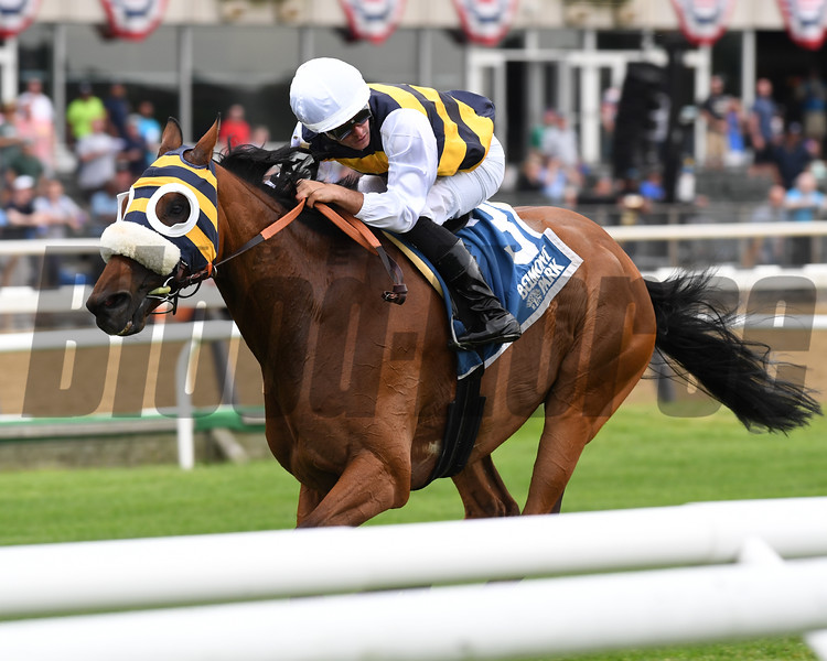 Amade wins the 2019 Belmont Gold Cup Invitational<br /> Coglianese Photos/Elsa Lorieul
