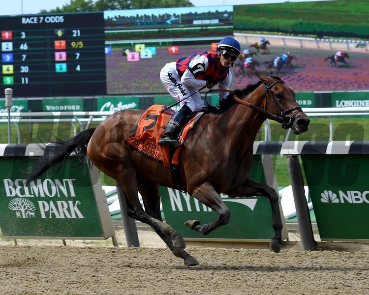 Guarana wins the 2019 Acorn Stakes at Belmont Park<br /> Coglianese Photos/Derbe Glass