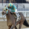 Do Share wins the 2019 Tom Fool at Aqueduct<br /> Coglianese Photos/Chelsea Durand