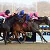 Tax wins the 2019 Withers Stakes at Aqueduct<br /> Coglianese Photos/Susie Raisher