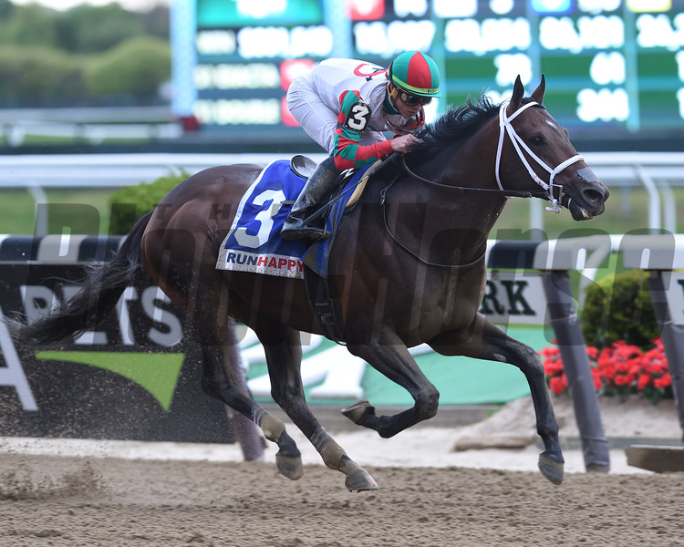 Firenze Fire wins the 2019 Runhappy Stakes at Belmont Park<br /> Coglianese Photos