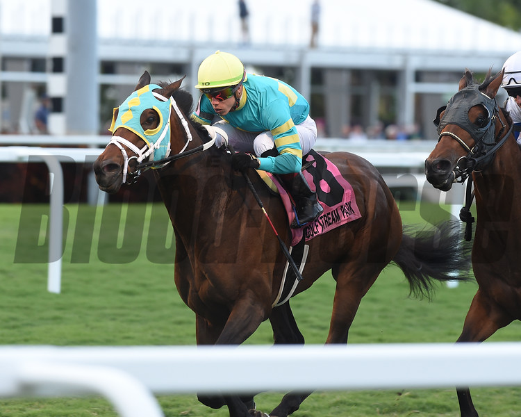 Hembree wins the 2019 El Prado Stakes at Gulfstream Park<br /> Coglianese Photos/Kenny Martin