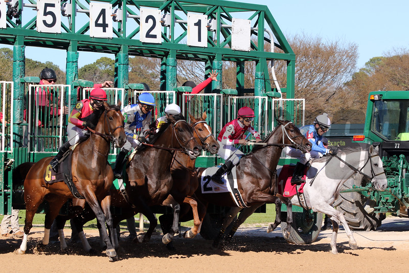 The start of the Azeri (GII) at Oaklawn Park on March 16, 2019. Photo By: Chad B. Harmon