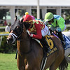 Driven by Thunder wins the 2019 James H. Kyle Stakes at Gulfstream Park<br /> Coglianese Photos/Ryan Thompson