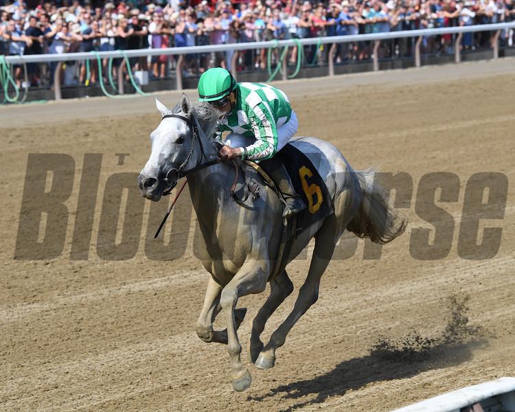 Mrs. Danvers - Maiden Win, Saratoga, August 18, 2019<br /> Coglianese Photos/Chelsea Durand