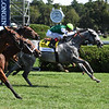 Significant Form wins the 2019 Ballston Spa Stakes at Saratoga<br /> Coglianese Photos