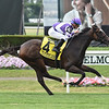 Concrete Rose wins the 2019 Belmont Oaks Invitational<br /> Coglianese Photos/Elsa Lorieul