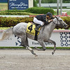 Take Command wins the 2019 Carry Back Stakes at Gulfstream Park<br /> Coglianese Photos/Lauren King