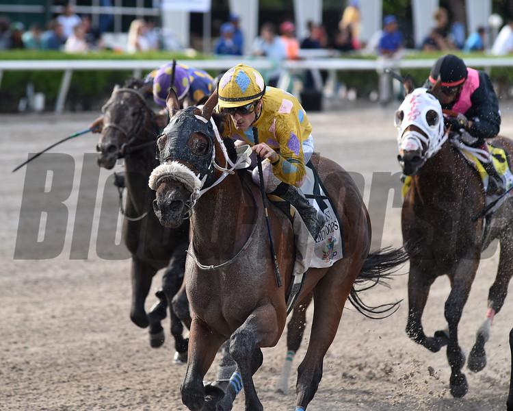 Diamond Oops wins the 2019 Smile Sprint Stakes at Gulfstream Park<br /> Coglianese Photos/Ryan Thompson