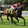 Cambier Parc wins the 2019 Wonder Again Stakes at Belmont Park<br /> Coglianese Photos