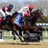 Mind Control wins the 2019 Bay Shore Stakes at Aqueduct<br /> Coglianese Photos