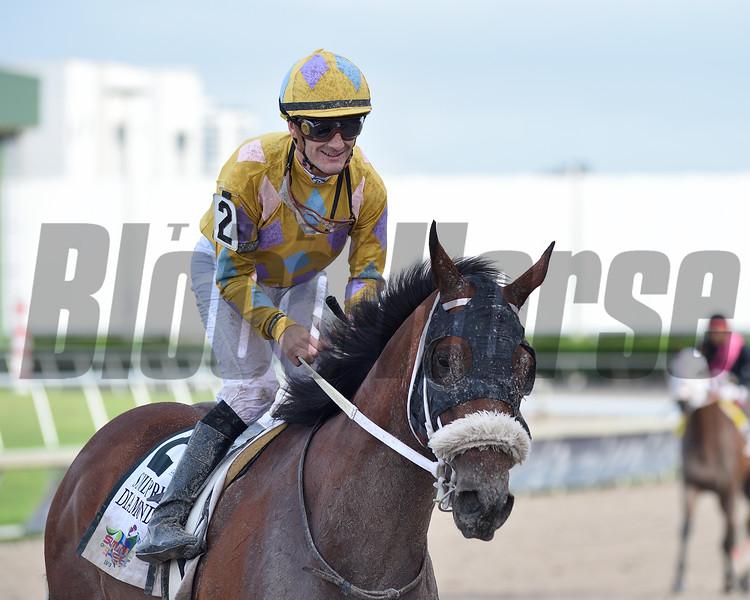 Diamond Oops wins the Smile Sprint Stakes Saturday, June 29, 2019 at Gulfstream Park. Photo: Coglianese Photos/Ryan Thompson