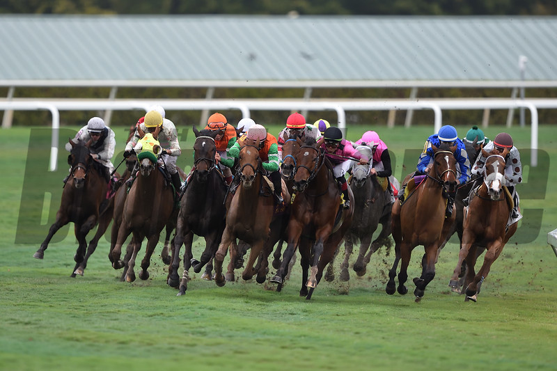 Dolce Lili wins the 2019 South Beach Stakes at Gulfstream Park<br /> Coglianese Photos/Tim Sullivan