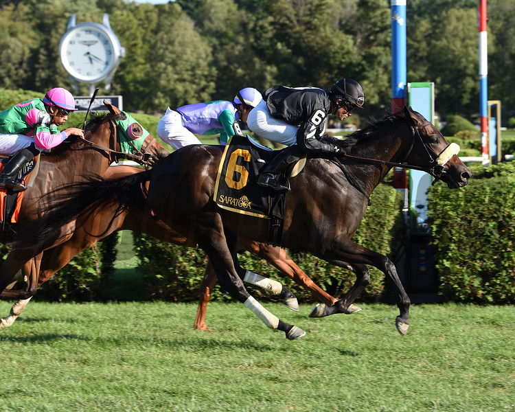 Crystalle wins the 2019 P. G. Johnson Stakes <br /> Coglianese Photos