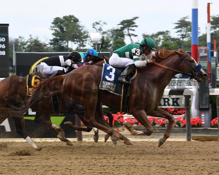 Catalina Cruiser wins the 2019 True North Stakes at Belmont Park<br /> Coglianese Photos/Susie Raisher