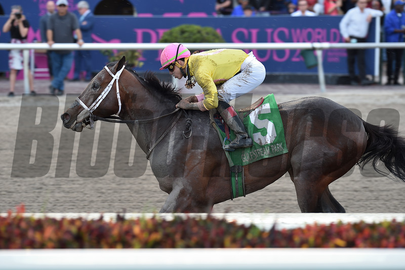 Call Paul wins the 2019 Swale Stakes at Gulfstream Park<br /> Coglianese Photos/Lauren King