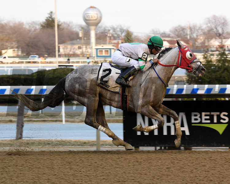 Mr. Brix wins the 2019 Caixa Eletronica Stakes at Aqueduct<br /> Coglianese Photos/Chelsea Durand