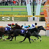 Normcore wins 2019 Victoria Mile at Tokyo Racecourse. Photo: Naoji Inada