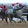 Startwithsilver wins the 2019 Correction Stakes at Aqueduct<br /> Coglianese Photos/Elsa Lorieul