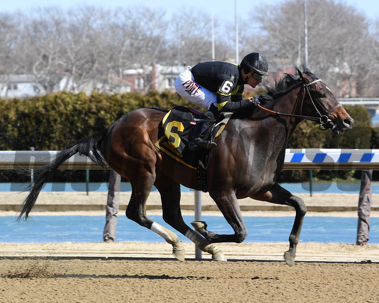 Durkin's Call wins the 2019 Gander Stakes at Aqueduct<br /> Coglianese Photos/Susie Raisher