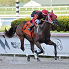 Man With a Plan - SOC, Gulfstream Park, September 6, 2019<br /> Coglianese Photos/Ryan Thompson