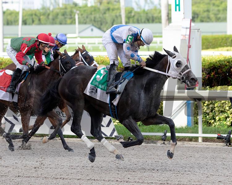 Ceci Valentina wins the 2019 Florida Sire Susan's Girl Stakes at Gulfstream Park. Photo: Coglianese Photos/Nicole Thomas