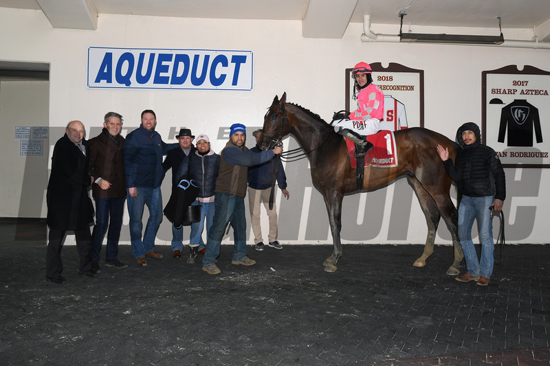 Tax wins the 2019 Withers Stakes at Aqueduct.<br /> Coglianese Photos