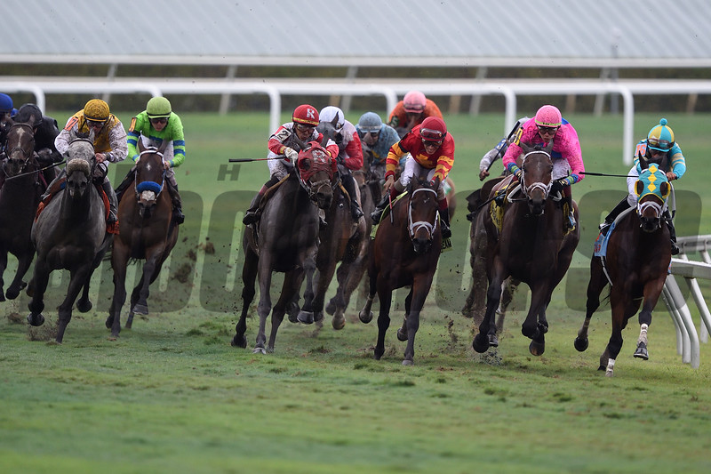 Zulu Alpha wins the 2019 W. L. McKnight Stakes at Gulfstream Park<br /> Coglianese Photos/Tim Sullivan