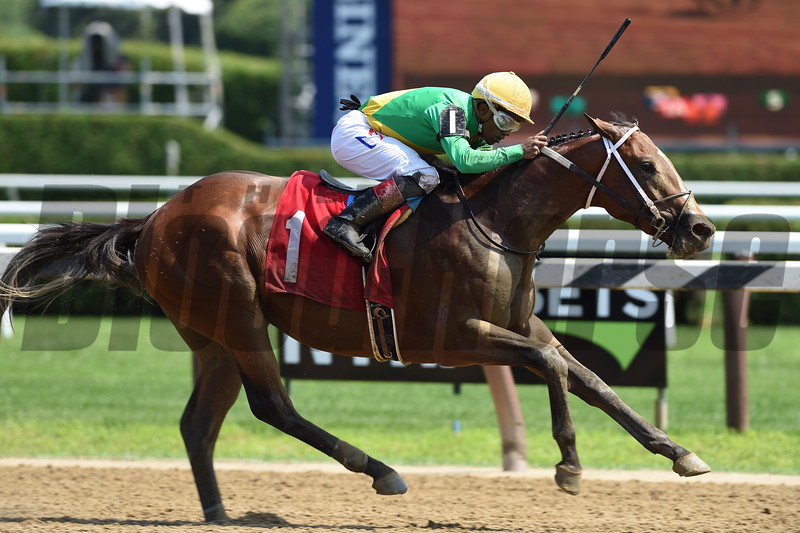 Shoplifted breaks his maiden Saturday, July 27, 2019 at Saratoga. Photo: Coglianese Photos